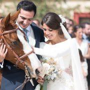 novios caballo catering bodas